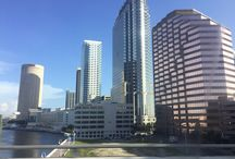 Tampa FL / What we love about Tampa