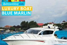 Bali Luxury Yacht Hire