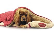 Pampered Pooches / All our favourite and must have dog products for your pampered pooches