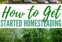 homesteading/ self sufficient living