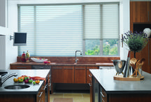 Silhouette Window Shades / An elegant and modern design for window fashions.