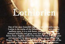 hobbit / lotr book