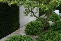 marta's garden /  design and garden