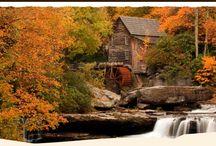 Fall Foliage Season