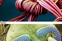 mikroskop goruntuleri