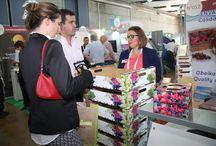 PMA Fruittrade Latin America / En Espacio Riesco, se realizó la #PMAFruittrade Latín América, la rueda de negocios en torno a la agricultura más importante del Latinoamérica, la cual es organizada por la Federación de Exportadores de Frutas (Fedefruta).