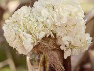 Wedding Planner/Events / by Mischelle Emery