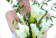Established April 23, 2012 / by Ashley Oden