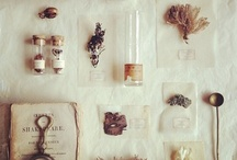 Still beauty, flat lays and collections