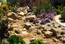 Dry Creek Bed Gardens