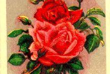 Розы - советские открытки