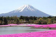 2015 Japan / Ideas for our Japan Trip!