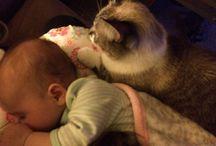 Cute Breastfeeding Babies