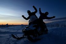 Snowmobiling / Snowmobile safaris at Harriniva