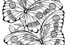 omalovánky- příroda