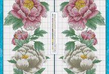flowers / kvetiny