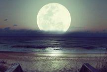 under the moonlite