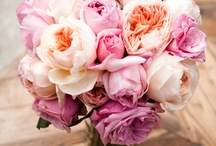Florals / Bouquets, centerpieces, bouts, etc. What girl doesn't love flowers?