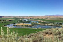 Road Trip: Idaho