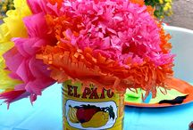 Fiesta / Ideas for the ultimate fiesta