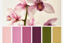 χρωματα τοιχων