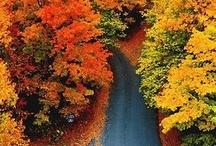 Vermont / by Erin Grimm