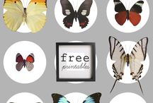 Pinnable Printables / by Jennifer Verbic