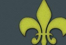 French Language  / Teaching strategies