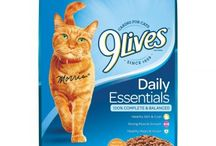 Top 5 Best Dry Cat Foods In 2017 Reviews