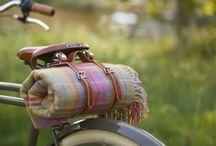 Bikes & Trips