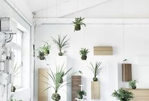 Green Living | Inspiration