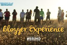 Bloggers Experience
