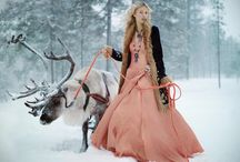 W15 Winter Forest