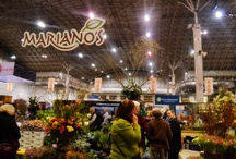 Chicago Flower & Garden Show (Mariano's presenting sponsor) / Flower tips to get you excited for the Chicago Flower & Garden Show! / by Mariano's