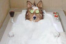 Badkamer fun! / Omdat de badkamer een leuke ruimte is!