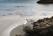 Ardalanish Beach