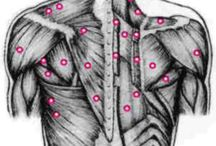 chakras , trigger points ,muscular pains
