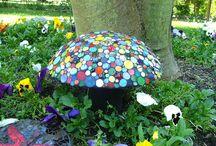 Colorful little garden.
