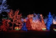 Christmas lights / by Emilee Fortner