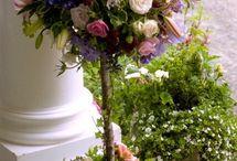 flowers/garden ideas / by Katie Huyette Majcher