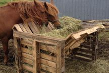 Horse Farm Must Have's