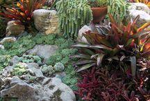 Gardenalicious