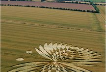 Crop circles / These leave me breathless with wonder about the mysteries of this universe