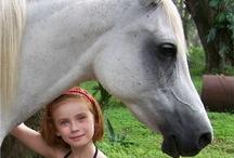 My pets, Horses and Animals I love