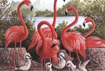 ❤Pink Flamingo Charm❤