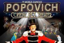 Popovich Comedy Pet Theater / by StateTheatre NJ