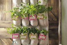 New takes on gardening