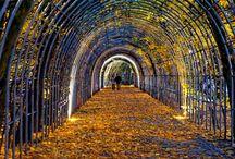 Kołobrzeg, Bindaż / Bindaż, berso, chłodnik czy kolebka to element architektury ogrodowej znany już od czasów renesansu. W Kołobrzegu jest ozdobą Parku Koncertów Porannych przy ul. Towarowej. I jest to prawdziwa perełka, ponieważ bindaż jest niezwykle rzadkim obecnie elementem założeń parkowych w Polsce. Kołobrzeski bindaż został założony w połowie XIX wieku, po wojnie zapomniany i zaniedbany odzyskuje powoli swoją świetność.