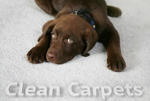 Hoover Carpet Cleaning / We service Hoover, Alabama.  Hoover is our next door neighbor!