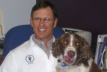 Our Veterinarians
